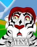 Hola, me presento, soy Caesar. Tigre_blanco-avatar.jpg?rand=0